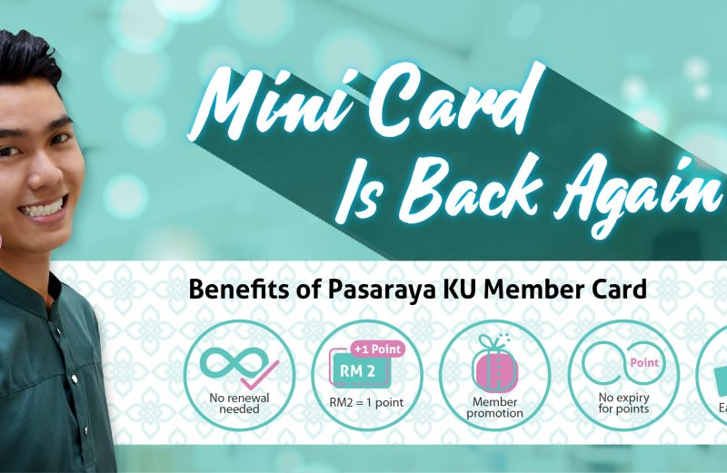 Mini Card Is Back Again